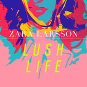 ZARA LARSON - LUSH LIFE