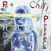 RED HOT CHILI PEPPERS sur Sweet FM